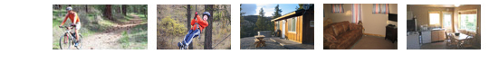 Scenic mountain cabins for rent at Uncle Tim's Chelan Rentals